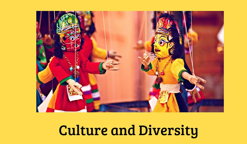 what is culture and diversity 2019