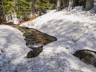 Dangerous snow bridge people had crossed! There was a log crossing nearby upstream | by snackronym