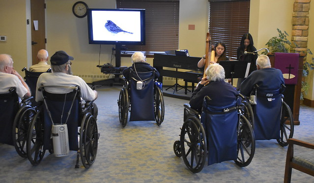 Nature Slides and Harp at Nursing Home