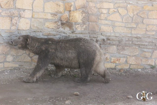 Besuch Zoo Tallin 27.04.201956