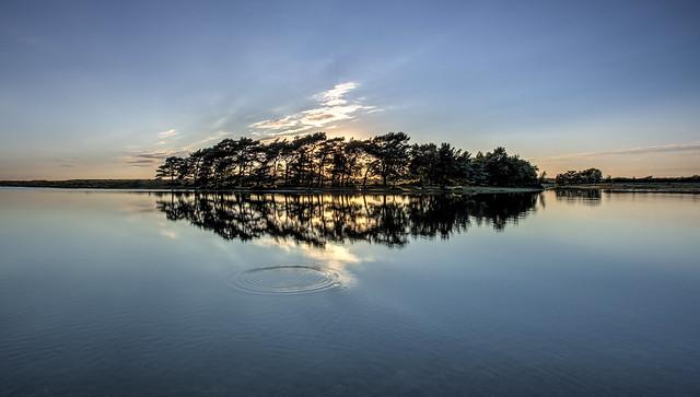 Hatchet Pond ripples