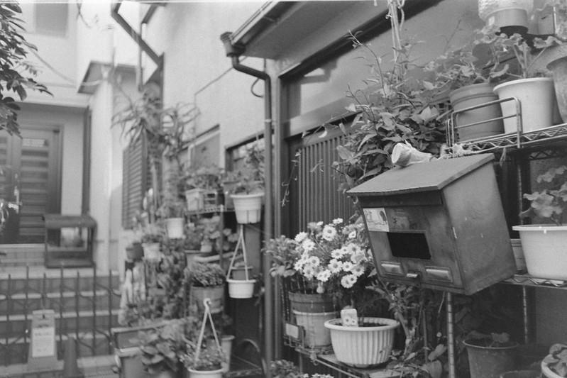 184LeicaM2 Summaron 35mm f35 Kodak 400TX 南池袋雑司ヶ谷