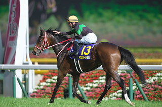 May 19 2019 -Japanese Oaks (G1)