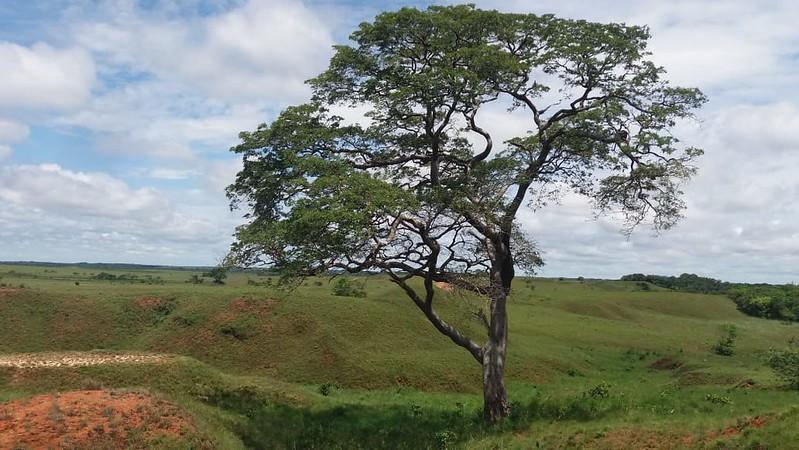 Visita Asentamiento indígena Kawinanae