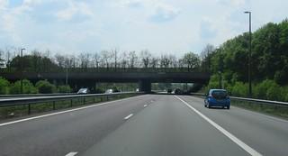ecoduct Terlet - dode bomen | by European Roads
