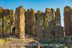 Basalt Columns in Frenchman Coulee, Washington