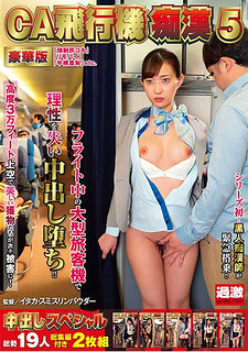 NHDTB-265 CA Airplane Pervert 5 Deluxe Edition Creampie Specials Total Of 19 People With Compilation 2 Disc