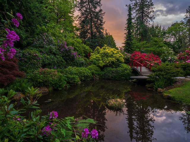 Kubota Gardens Red Bridge Sunset