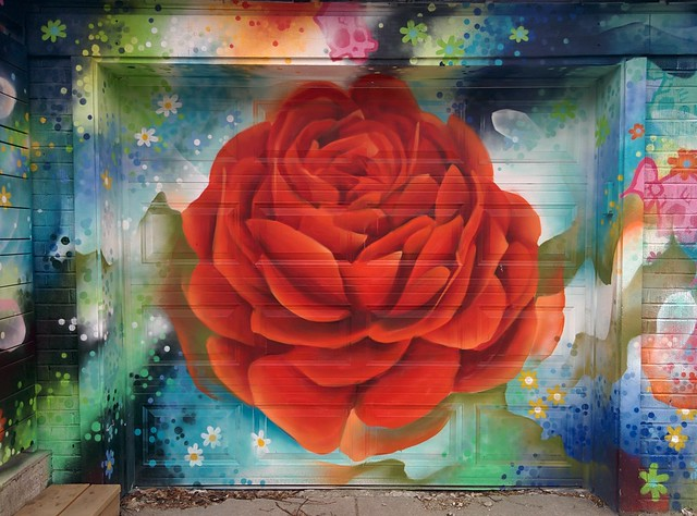 Garage door rose, Roncesvalles below Grenadier Road #toronto #roncesvalles #roncesvallesave #rose #garage #door #publicart #mural