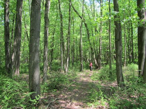 Westchester hike