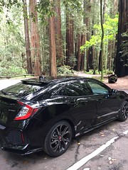 ARMSTRONG Redwood State Park #fk7 Honda Civic