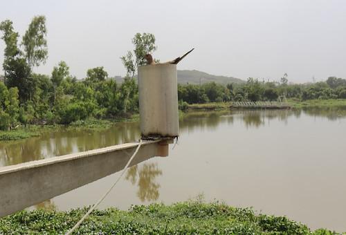 Sotuba, Bamako, la mère des centrales hydro-électriques du Mali.