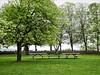 We could all gather in the park at Alby and have the greatest picnic ever. That would be so much fun. I'll bring....What do I bring to so many people? I'll find out.