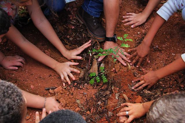 Vivências na natureza incentivam preservação ambiental