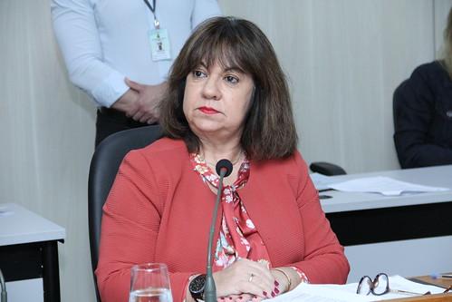 13ª Reunião Ordinária- Comissão de Orçamento e Finanças Públicas