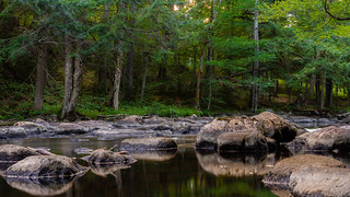 Tranquil Creek Near Big Moose Lake at Covewood | by John Brighenti