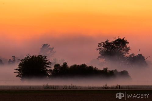 twilight trees airshow owensboro sunset fog kentucky usa