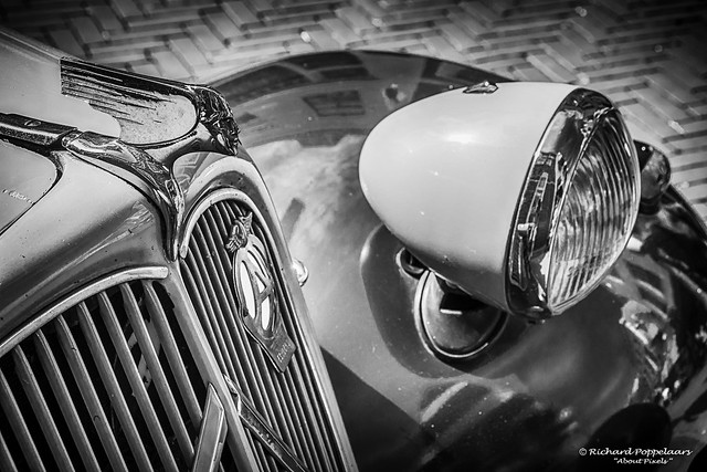 Classic car hood design and decoration - American Cars and Classics (Brielle/NL)