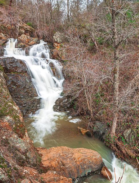Bare Trees at Hidden Falls