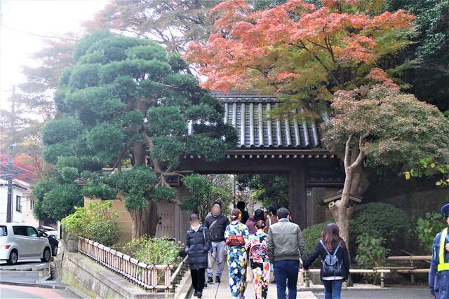 houkokuji036