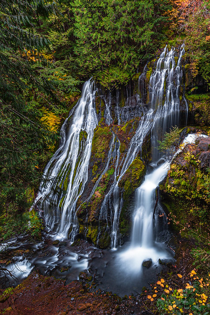 Autumn at Panther Creek Falls