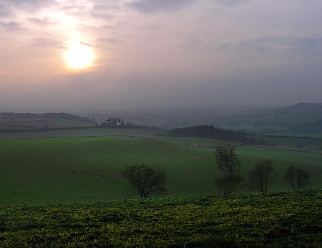 Winter light, SW England