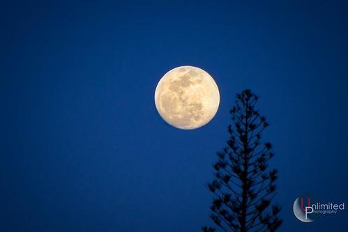 canon powershot sx10 hawaii travel tropical moon bigisland bluehour fullmoon peace nature night usa scenic natural beer unlimitednyc photographer