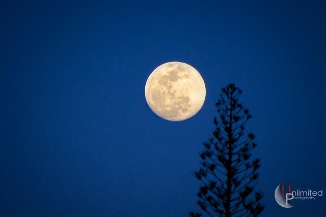 Hawaii Moon