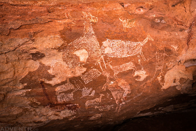 Sheep Pictographs