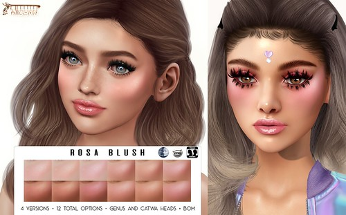 Rosa Blush Updated