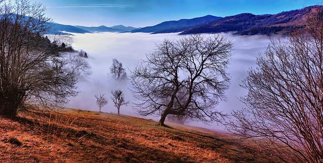 River of fog.