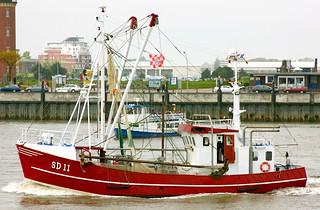 """Krabbenkutter """"SD 11"""" in Cuxhaven"""