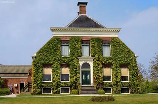 Groningen: Usquert, green farmhouse