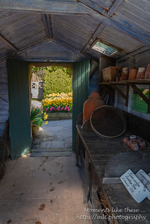The Potting Shed | by Moments like these ...