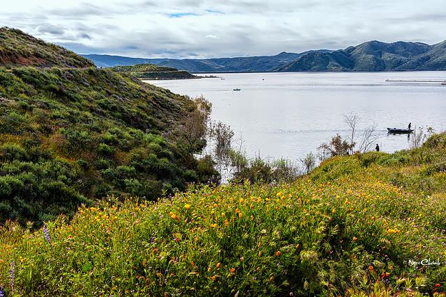 Diamond Valley Lake, CA