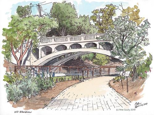 Arboretum Bridge | by petescully