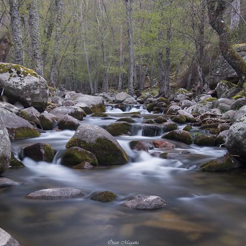Valle de Iruelas, Avila | by Otylgar