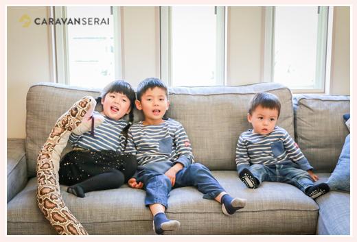 兄弟の家族写真 自宅 にしきへびのぬいぐるみ