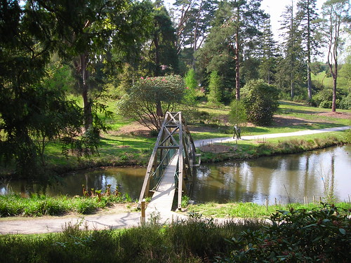 Kent - Bedgebury National Pinetum