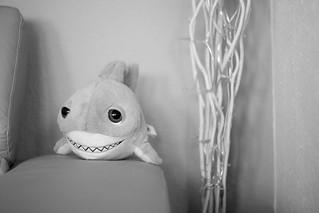 Shark Attack | by fragger2104