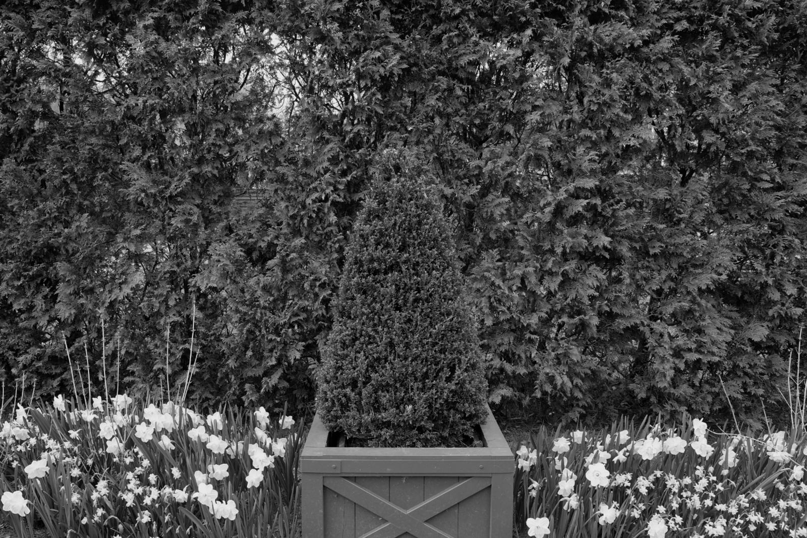 Sat, 04/13/2019 - 4:08pm - hiding