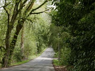 A short loop off of Tokul Road | by NBend