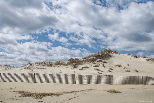 lostintheclouds lowerslowerdelaware lsd lewes lewesde delaware de sussexcounty clouds cloudsbluesky cloudyday beach sand dunes dune dunegrass grass grasses fence fenceline spring springtime springday capehenlopenstatepark capehenlopen statepark park