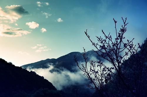 taiwan hsinchu hsinchucounty jianshi jianshih mrqwang sky blue mountain mountains tree trees leaves leaf mist mists clouds cloud shadow contrast sunlight morning dawn sunrise