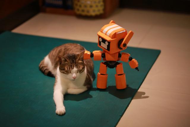 K-VRC + CAT