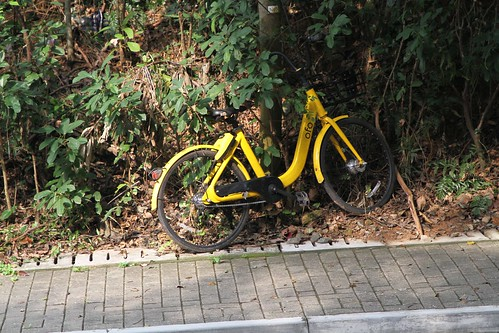 Another dumped ofo bike in the bushes outside the Tsz Shan Monastery
