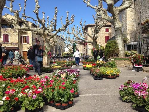 Marché aux fleurs 5