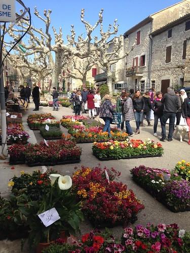 Marché aux fleurs 4