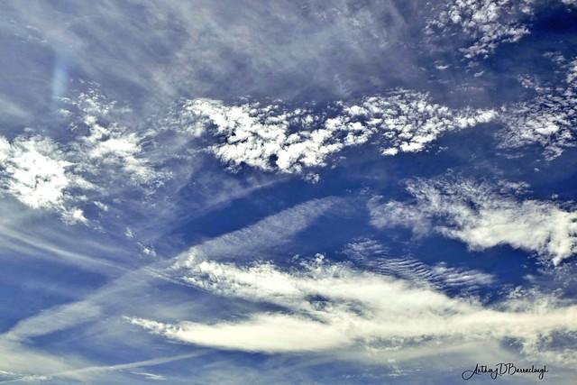 Spectacular Sky 175-1