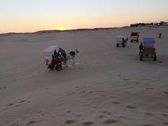 Travesia atardecer ruta en carro y caballo al Desierto del Sahara Douz Tunez 09